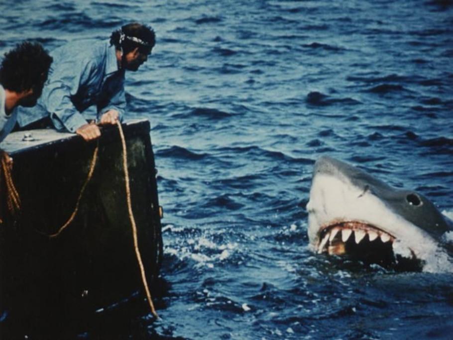 5) Tubarão  - Divulgação