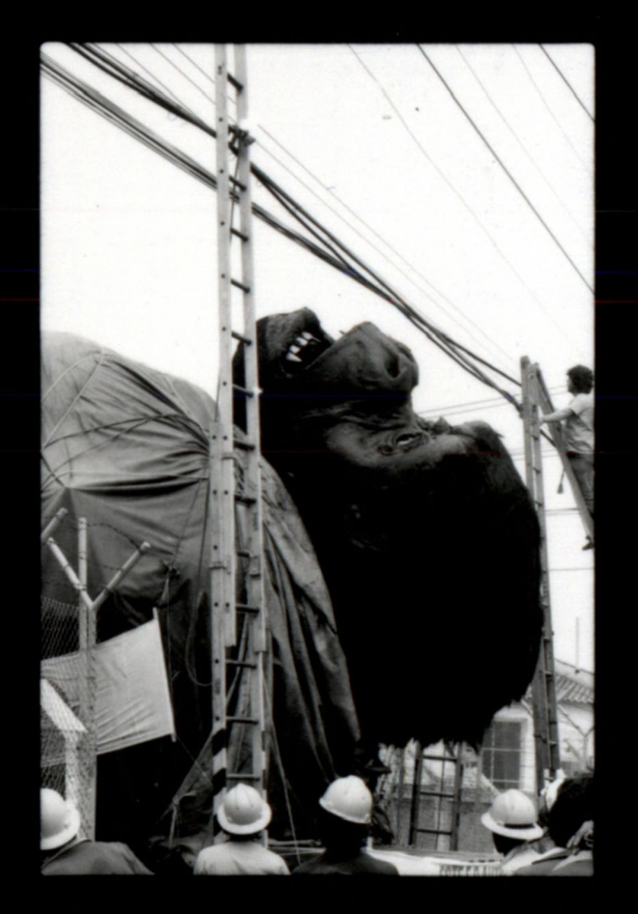 Cabeça de King Kong - Alfredo Rizzutti/ Estadão
