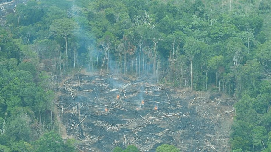 Área desmatada na Amazônia - Antonio Cruz/Agência Brasil
