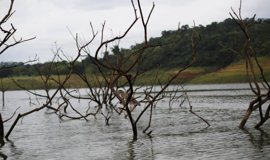 Mesmo sem chuva, nível do Cantareira sobe pelo 4º dia consecutivo - Nacho Doce/Reuters