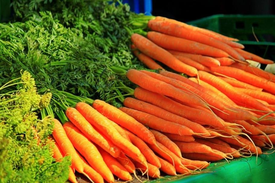 Cenoura faz bem para a visão? Verdade - Pixabay
