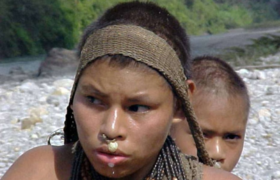 Fotos raras de índios isolados na Amazônia peruana são divulgadas - Survival/Dilvugação