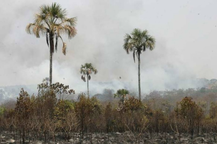 Incêndio na reserva de cerrado do Jardim Botânico, em Brasília. - Beto Barata/AE - 20/09/2005