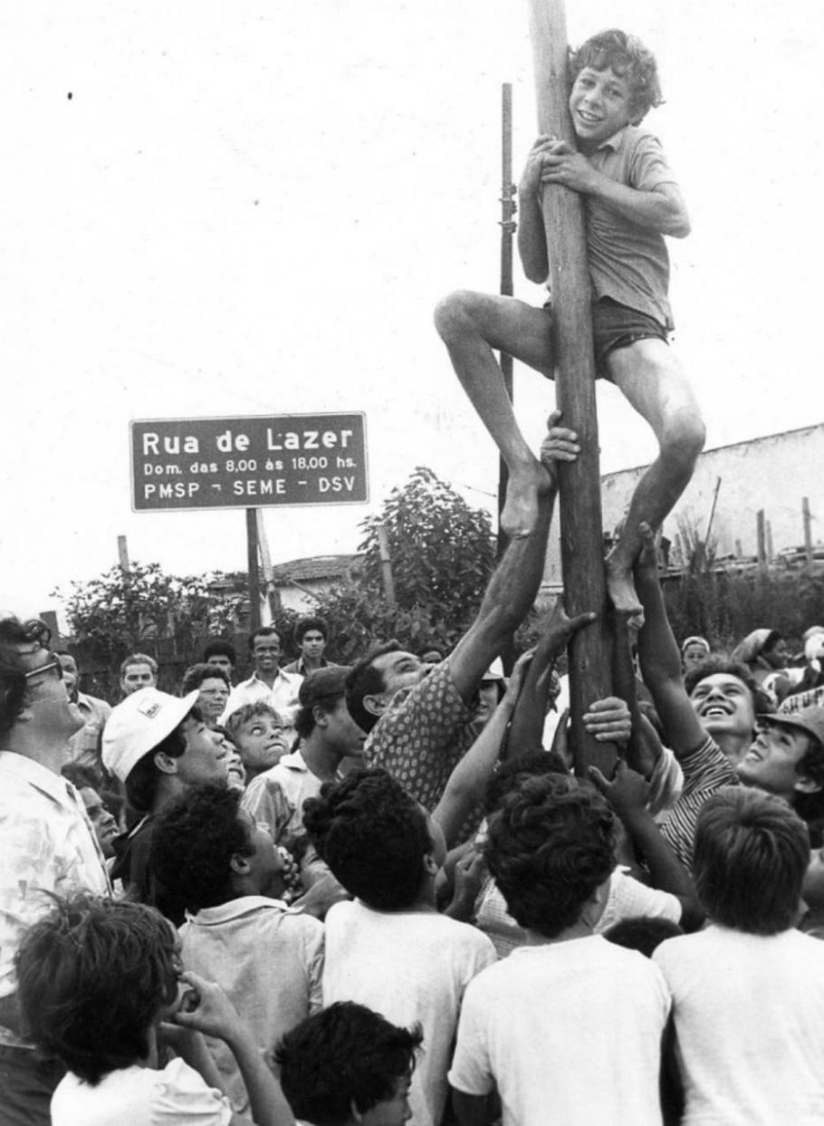 Pau de sebo - Marcos Fernandes/ Estadão