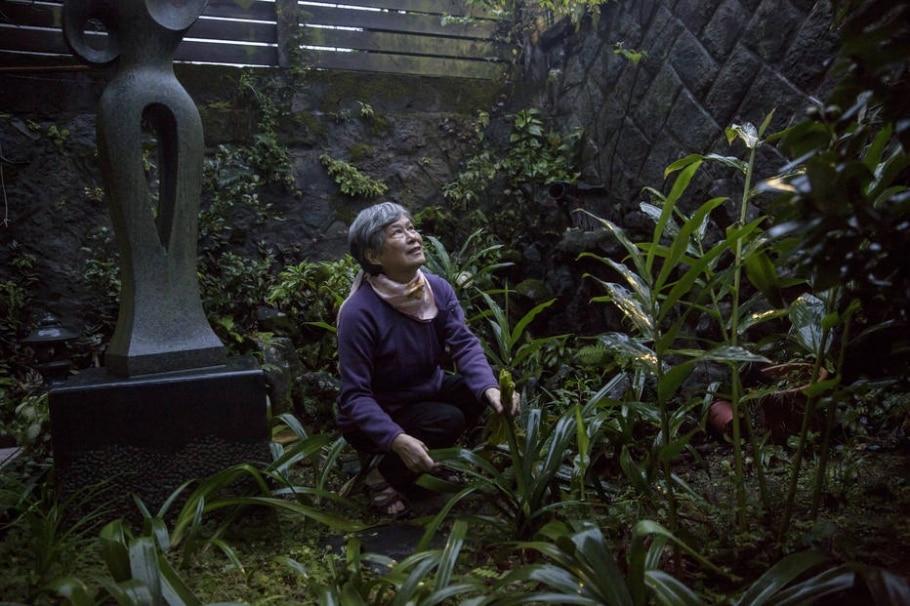 Guo Su-jen, cujo pai foi executado em 1952, cuida de seu jardim em Taipé; ela recebeu uma carta de despedida mais de 60 anos depois - Billy H.C. Kwok/The New York Times