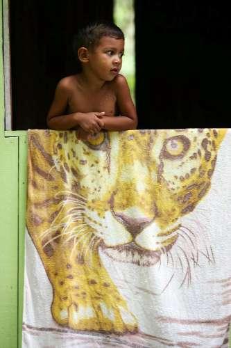 Kayanderson Ferreira, de 4 anos, na janela de casa