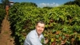 Café 'sustentável' avança no Brasil e já representa cerca de 15% da safra