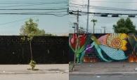 Veja fotos do projeto 100 Minas na Rua na Virada Sustentável 2020