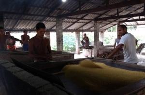 Lençóis Maranhenses: imersão na cultura local dentro da Casa de Farinha