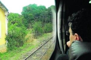 Pare, olhe, escute: confira passeios de trem pelo Brasil