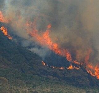 Autoridades suspeitam de incêndio criminoso na Serra dos Órgãos