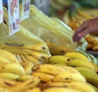 Saiba onde e quando funcionam as feiras do distrito do Butantã