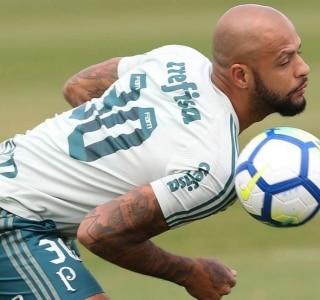 091ed2ff15 Cesar Greco Ag. Palmeiras