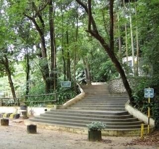 Guia dos Parques Municipais de São Paulo/Divulgação