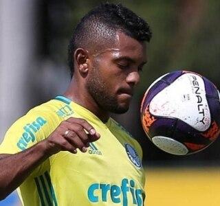 Cesar Greco|Ag. Palmeiras