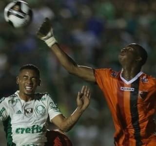 Cesar Greco Ag. Palmeiras