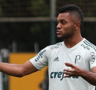 Cesar Greci/Ag. Palmeiras