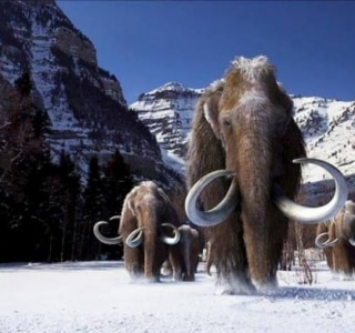 REUTERS/Courtesy of Giant Screen Films, copyright 2012 D3D Ice Age, LLC