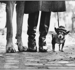 Elliott Erwitt/Galeria do Sesi
