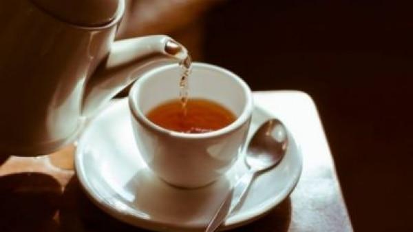 Chá pode ajudar a proteger o cérebro