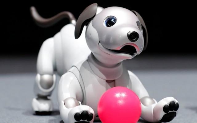 Nova versão do cachorro robô Aibo, lançada pela Sony