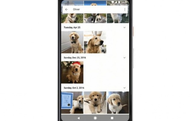 Inteligência Artificial do Google Fotos agora consegue identificar rostos de animais.