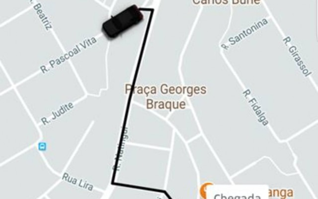 Assim que um motorista aceitar a viagem, o usuário vai ver a cor do carro no mapa do aplicativo.