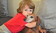 Brasileiro transforma cão em herói de crianças especiais