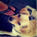 instagram1600