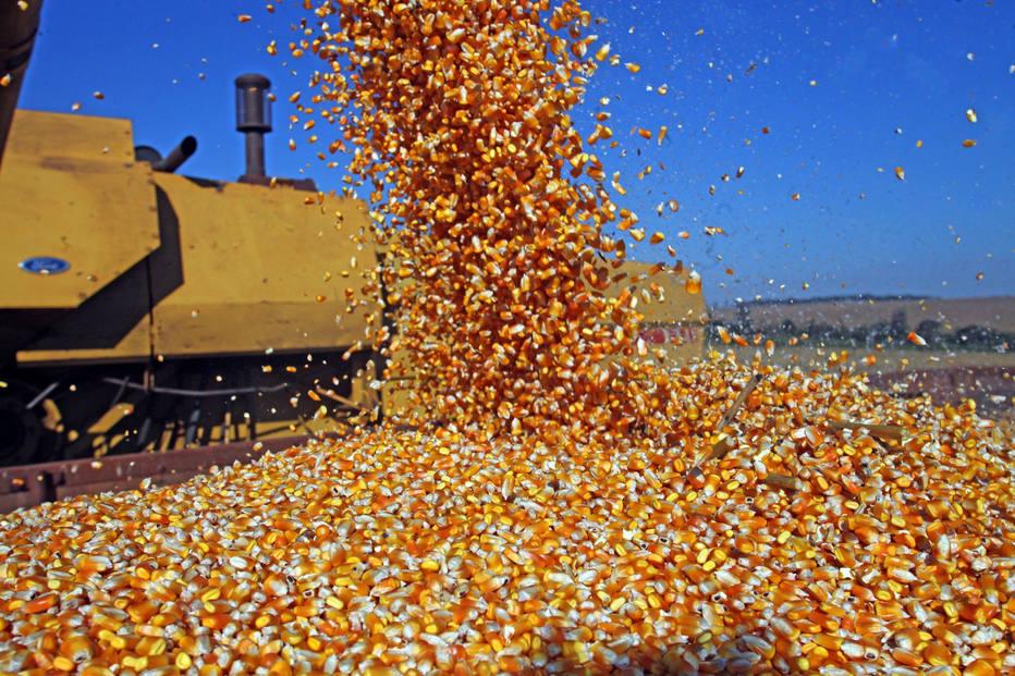 ctv-wuk-milho-colheita