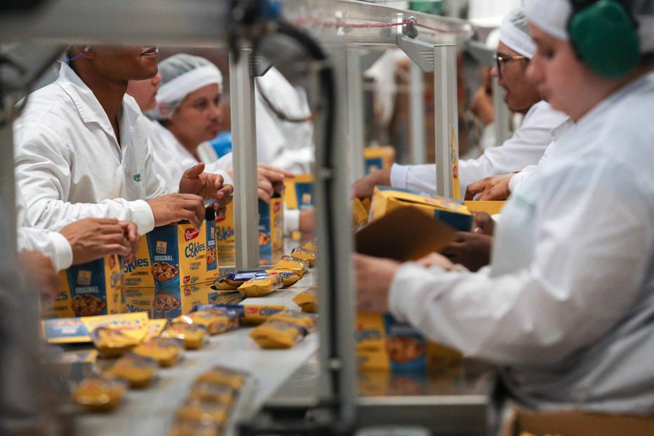 industria alimenticia bauducco