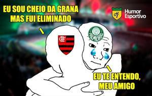Palmeiras E Flamengo Eliminados Nos Pênaltis Os Melhores