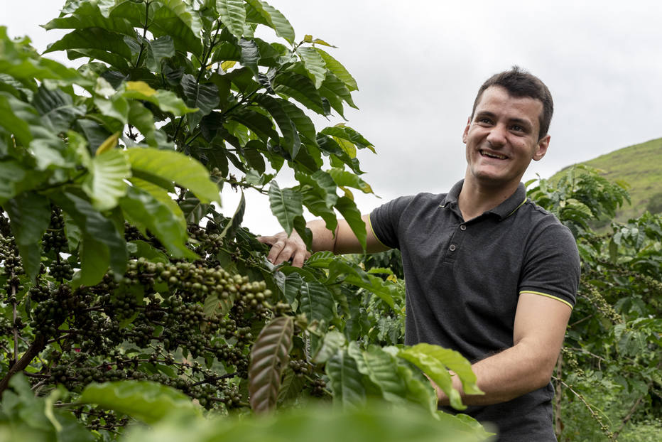 Novas gerações de cafeicultores tentam abolir uso de herbicidas nas produções