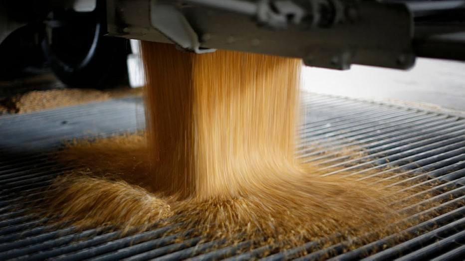 Produtores de grãos da Rússia pedem que governo não restrinja exportações