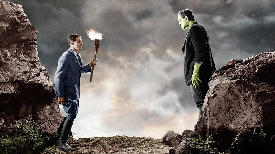 frankenstein self education of the monster Why should you care about what victor frankenstein says in mary shelley's frankenstein don't worry, we're here to tell you.