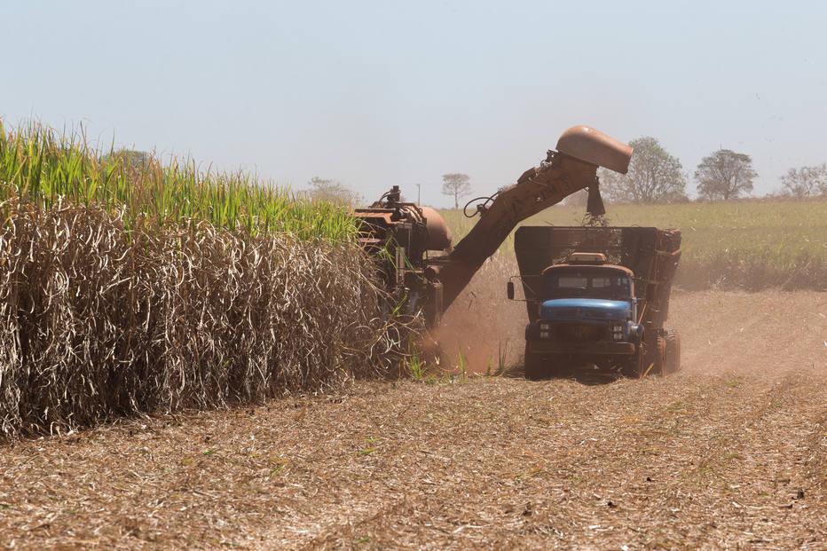 Roubo de etanol