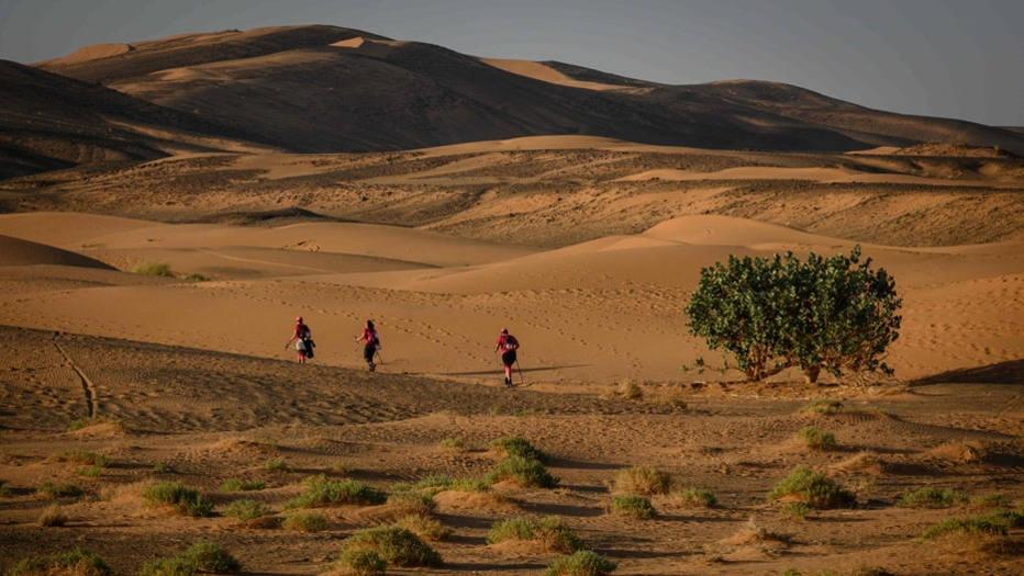 """""""Rose Trip Maroc"""""""