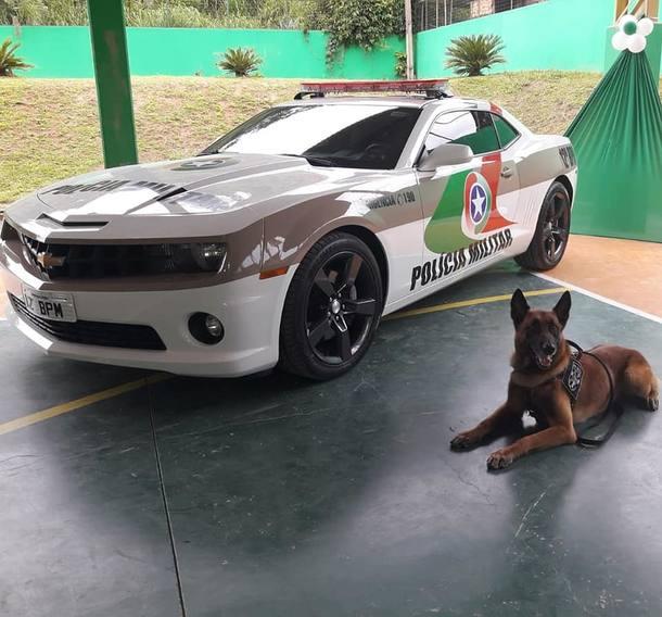Camaro e Cão policial da corporação