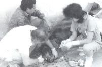 Veterinários do Zoológico de São Paulo tratam de um urso em julho de 1986.