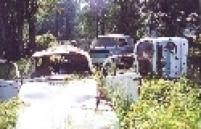 Parque Ecológico do Tietê esteve abandonado no começo da década de 90.
