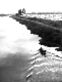 Vista do Rio Pinheiros com um barco passando próximo a trecho de mata em 1957. O rio foi chamado de Pinheiros pelos jesuítas, devido a quantidade de araucárias às suas margens.