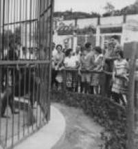 Visitantes no Zoológico de São Paulo,SP. 23/01/1960.