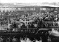 Mesas de apuração de votos, Ibirapuera, 1961