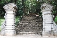 Escadaria do Jardim Botânico de São Paulo. O parque possuiu atualmente 143 hectares. Originalmente pertencia a sitiantes e chacareiros e foi desapropriado aos poucos pelo estado.