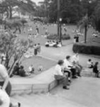 Vista parcial dos jardins do Museu do Ipiranga, São Paulo, SP, 12/3/1960.