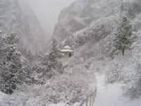 Patrimônio Natural.Uma das maiores cadeias montanhosas do mundo, Tien-Shan atravessa vários países e está situado a uma altitude que varia de 700 a 4,5 mil metros. Sua riquíssima biodiversidade é essencial para o desenvolvimento da flora típica de florestas e uma vasta comunidade de plantas únicas
