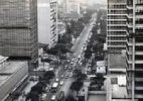Paulista em 1966 com a linha de bondes no centro da avenida e com os ipês amarelos em toda sua extensão. As árvores foram derrubadas em setembro de 1972, logo na primeira semana de obras do projeto Nova Paulista.