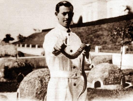 Pesquisador do Instituto Butantan segura uma cobra Jararaca, São Paulo, SP. 1939.