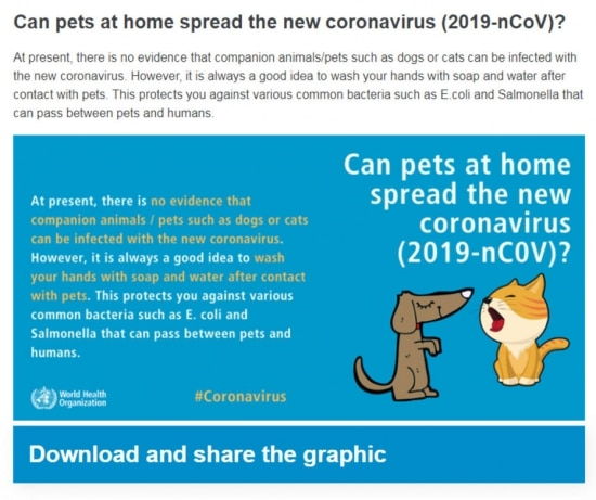 A Organização Mundial de Saúde (OMS), esclarece que não existe até agora evidências de que animais domésticos possam transmitir o novo coronavírus (Covid-19). Imagem:Reprodução/ OMS Cliqueaquipara saber mais