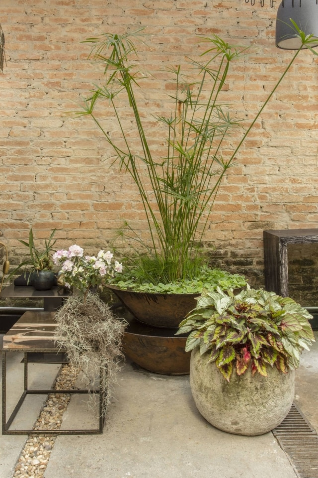 Vasos de diferenres formatos em projeto de Marco Aurélio Viterbo